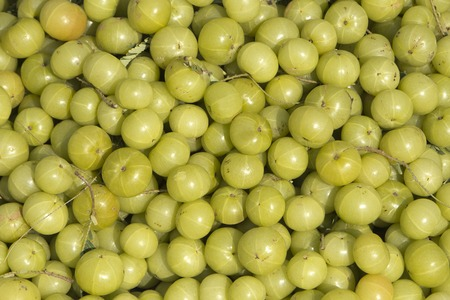 Close-up of a heap of Indian gooseberries (Emblica officinalis)