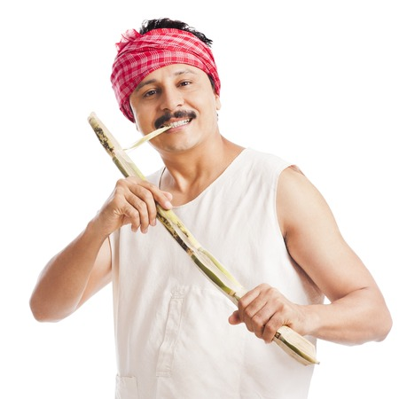 one mid adult man: Portrait of a farmer eating sugar cane and smiling Stock Photo