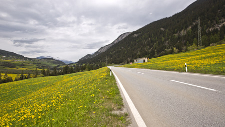 Road in a valley, St. Moritz, Italy