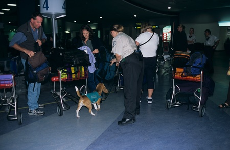 sniffer: Sniffer dog with officer in an airport