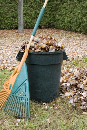 Autumn leaves in a garbage can - Vertical  photo