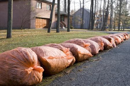 Many orange garbage bags at curb  photo