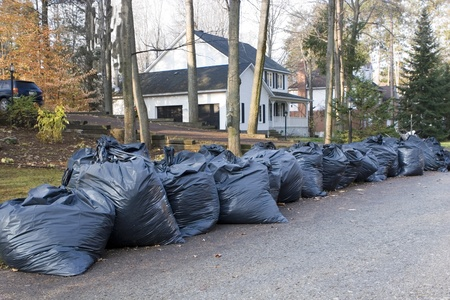 curb: Many green garbage bags at curb