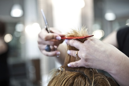 hair cut: Close-up of woman getting a haircut at a beauty salon