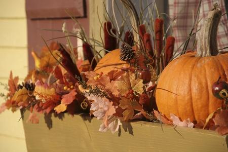 quaint: Halloween pumpkin decorations in a window sill