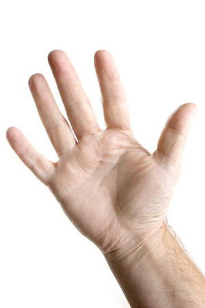 Five fingers palm of hand Stock Photo - 10611570