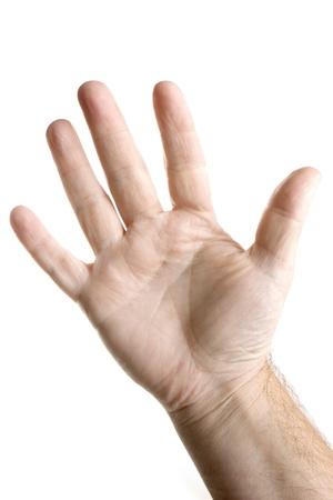 Vijf vingers palm van de hand Stockfoto - 10611570