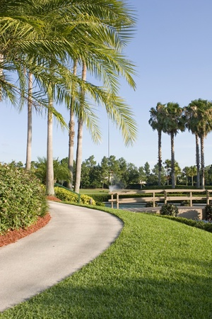 orlando: Luxury hotel grounds