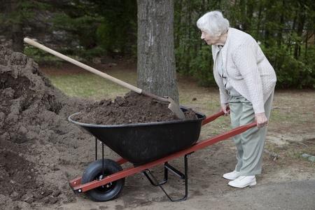 Senior woman carrying dirt in a wheelbarrow  photo