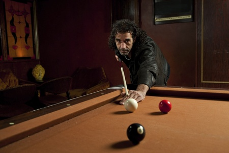 billiards halls: Pool Shark in azione