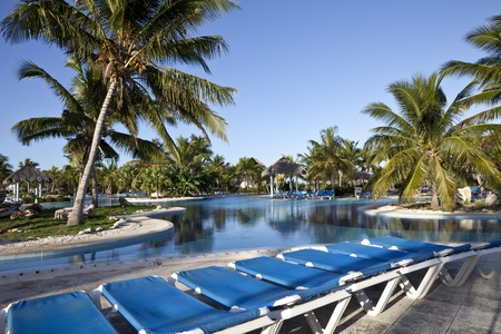 Luxury Resort Hotel Swimming Pool with Palm Trees Deck Chairs in foreground  photo