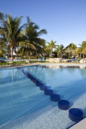 Luxury Resort Hotel Swimming Pool with Palm Trees  photo