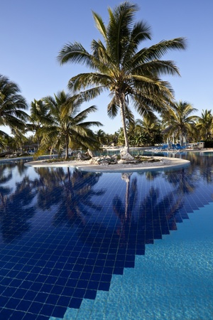 Luxus-Resort Hotel Swimming Pool mit Palmen photo
