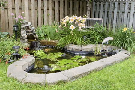 formal garden: Garden Pond  Stock Photo