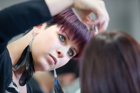 Hairdresser cutting hair Stock Photo - 13005689