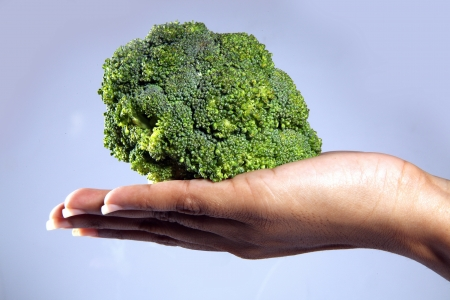 Close-up of a palm holding broccoli Stock Photo - 17327323