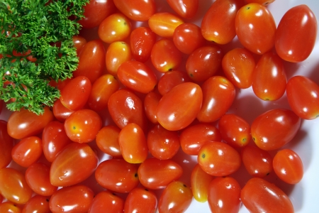 Close-up of tomatoes and coriander leaves Stock Photo - 17327262