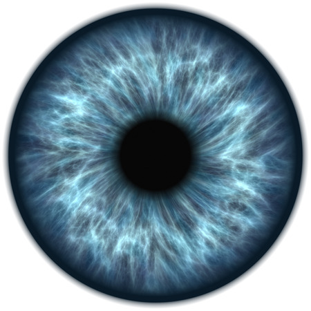 iris: blue iris