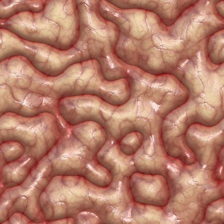 intellectually: human brain texture seamless Stock Photo