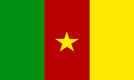cameroonian: flat cameroonian flag Stock Photo