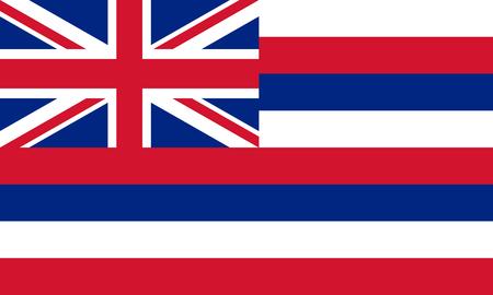 flat hawaii state flag - usa