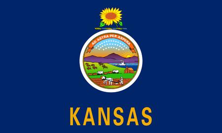 flat kansas state flag - usa Zdjęcie Seryjne