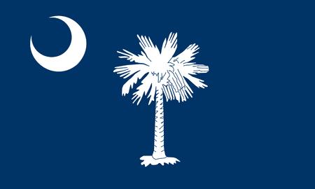 flat south carolina state flag - usa