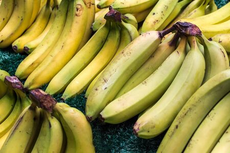 Bunch of green yellow bananas on grass 写真素材