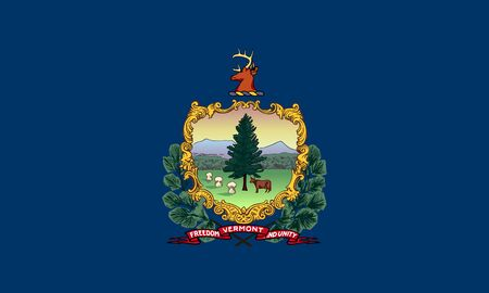 flat vermont state flag - usa