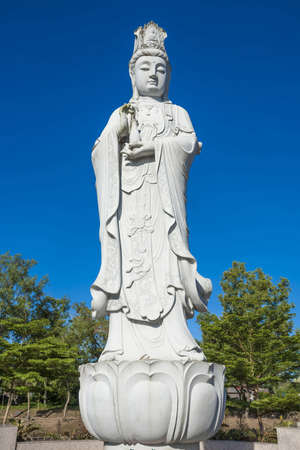goddess of mercy in the gardeen photo