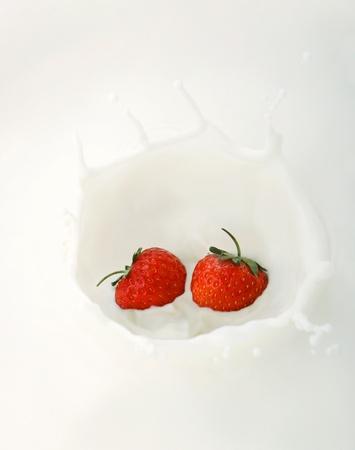 Two strawberries splashing into milk Stock Photo - 11609894