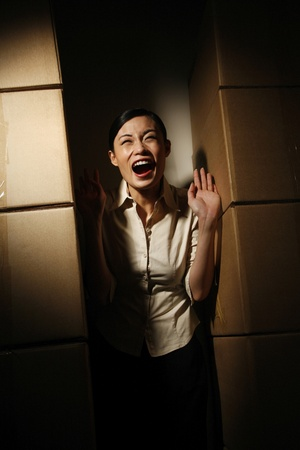 Businesswoman standing in between boxes screaming Stock Photo - 11610087