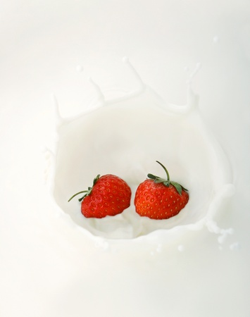 Two strawberries splashing into milk Stock Photo - 12642997