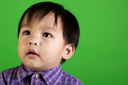 Studio shot of boy in checkered shirt on a green background Stock Photo - 12643329