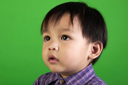 Studio shot of boy in checkered shirt on a green background Stock Photo - 12643347