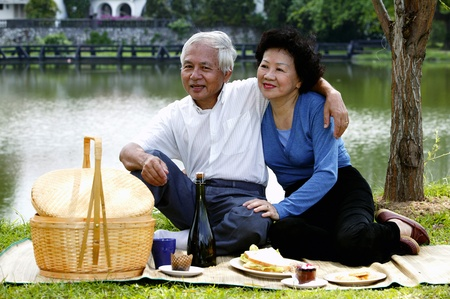 Old couple picnicking in the park Stock Photo - 12644066