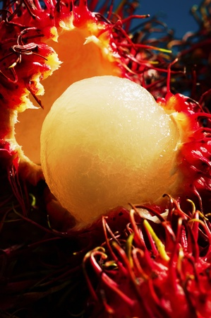 Rambutans Stock Photo - 12644544