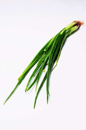 Spring onions on the table Stock Photo - 12645313