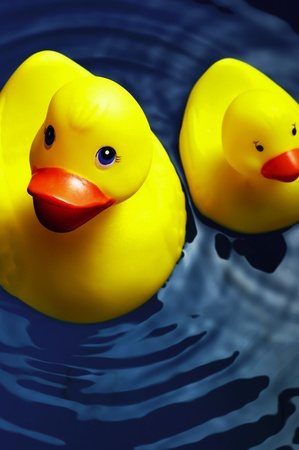 Rubber duck floating on the water Stock Photo - 12645921