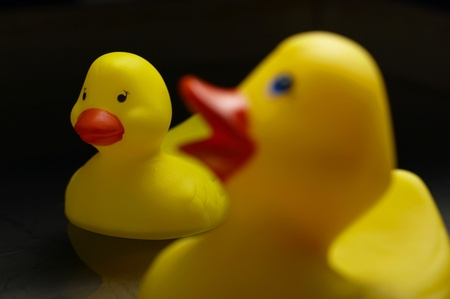 Rubber duck floating on the water Stock Photo - 12645933
