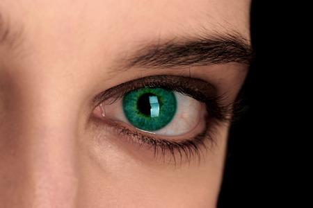 eye green: Una foto de cerca de un hermoso ojo verde LANG_EVOIMAGES