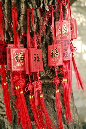 pendants: Chinese knots and pendants