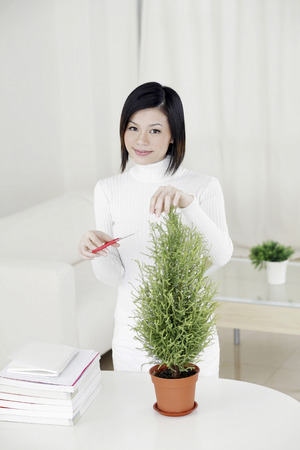 trimming: Woman trimming her plant