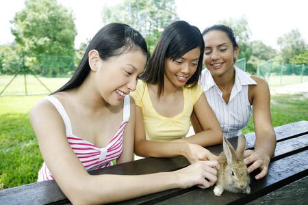 petting: Women petting a rabbit