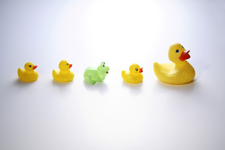 five objects: Rubber ducks and rubber frog in between LANG_EVOIMAGES