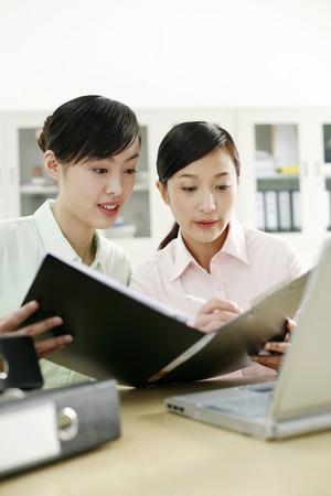 workmate: Businesswomen having discussion