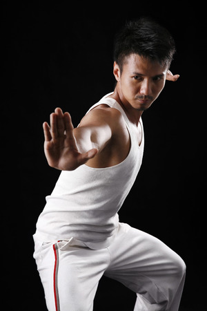 bare chested: Man practising martial art LANG_EVOIMAGES