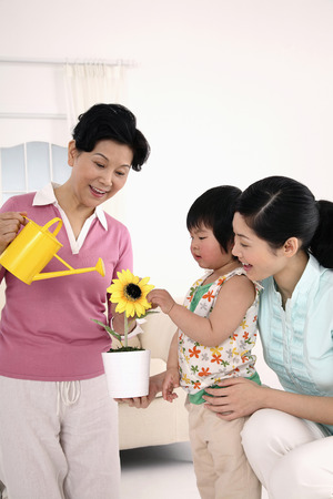watering plant: Senior woman watering plant, woman and girl watching
