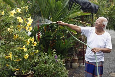 watering plants: Senior man watering plants