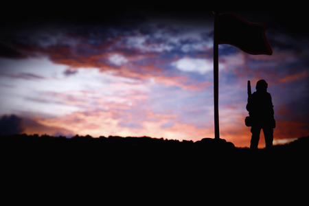 toy soldier: Toy soldier guarding by flag LANG_EVOIMAGES